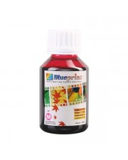 Blueprint Bulk Ink Photo 100 ml HP Magenta